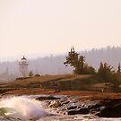 Grand Marais, Minnesota ~ The North Shore of Lake Superior by Trina King