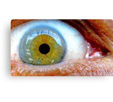 Macro Eye  Canvas Print
