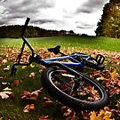 Fall Bike by Benjamin Lehman