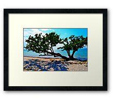 Tree of Life Framed Print