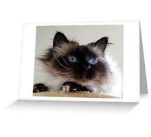 Do I look like Salvador Dali? Greeting Card