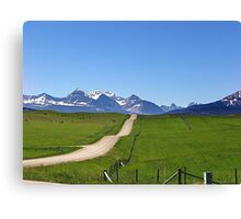 Dippy Road Canvas Print
