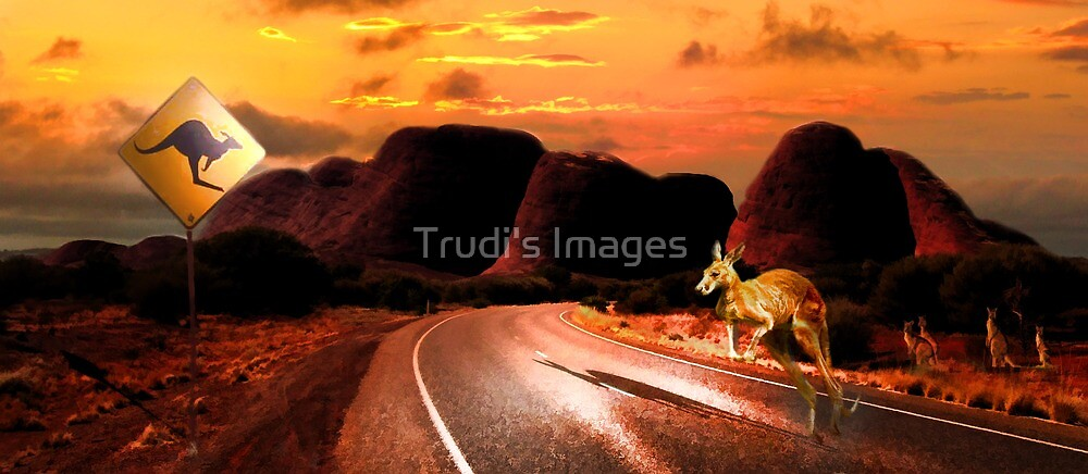 Dusk by Trudi's Images