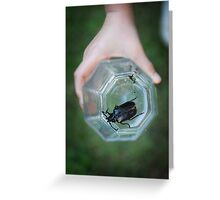 Child holding large bug in glass Greeting Card