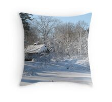 goose in field in winter storm Throw Pillow
