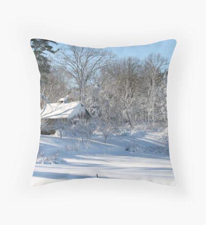 goose in field in winter storm Throw Pillow