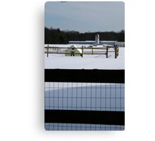 farm through fence Canvas Print