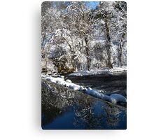 reflection waterfall Canvas Print