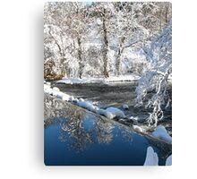 reflection falls Canvas Print
