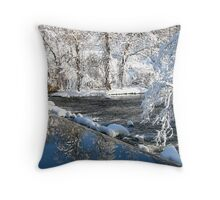 reflection falls Throw Pillow