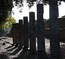 Ruined collonade - Pompei by Peter Martin