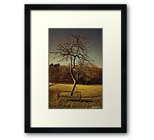 wood, green, and rusted metal 1 Framed Print