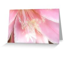 Pretty in pink (Fractalius) Greeting Card