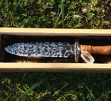 Arkansas, The Bowie Knife State by PaulCoover
