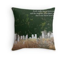 The measure of my days Throw Pillow