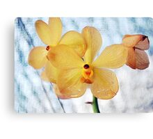 Light Vintage Orchid Canvas Print