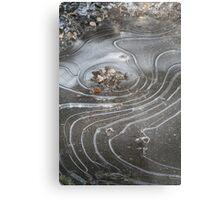 ice designs Metal Print