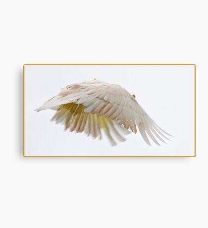 Flying Cockatoo Canvas Print