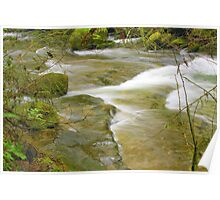 Sweet Creek Falls #5 Poster