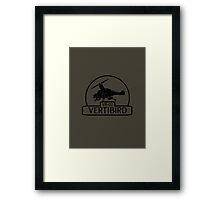VB-02 Vertibird Framed Print