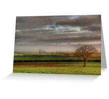 lonley tree in winter Greeting Card