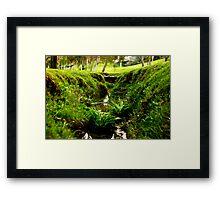 Tiny Grass Valley Framed Print