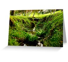 Tiny Grass Valley Greeting Card