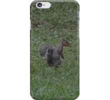 Squirrel in the Forest iPhone Case/Skin
