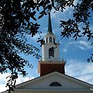 Historic Church in Madison, FL by Debbie Robbins