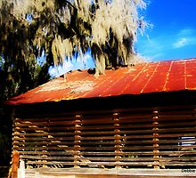 Tobacco Barn by Debbie Robbins
