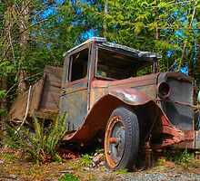 Abandoned truck by DigitalTulip
