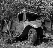 Abandoned truck B&W by DigitalTulip