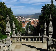 View to Lamego by Marilyn Harris