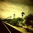 29 Palms by KeriFriedman