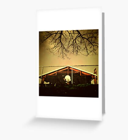 Buckman Hoops Greeting Card
