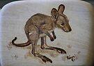 Eastern Grey Kangaroo Joey by aussiebushstick