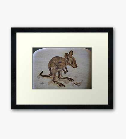 Eastern Grey Kangaroo Joey Framed Print