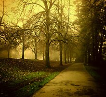 Walking to Work by KeriFriedman