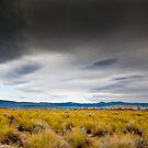 Mono Lake with a Grand Sky by Zane Paxton