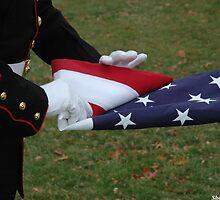 I pledge allegiance... by wbshadowcatcher