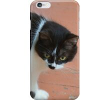 Cat Stalking on the Porch iPhone Case/Skin