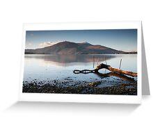 Lone Branch, Lough Leane Greeting Card
