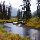 Homestake Creek near Tennessee Pass in fall by Klaus Girk