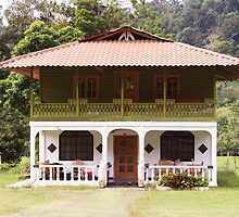 German House in Panama by genez