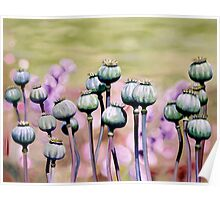 """Regal Gathering"" - green poppy heads  Poster"