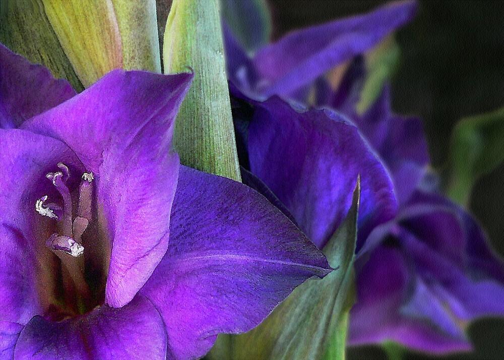 We Be Glad We Be Purple by paintingsheep