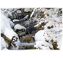 Gash Creek with snow and ice in February Poster