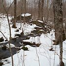 Cold Spring Brook by linmarie