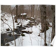 Cold Spring Brook Poster