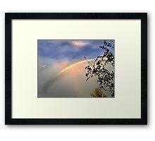 Rainbow connection Framed Print